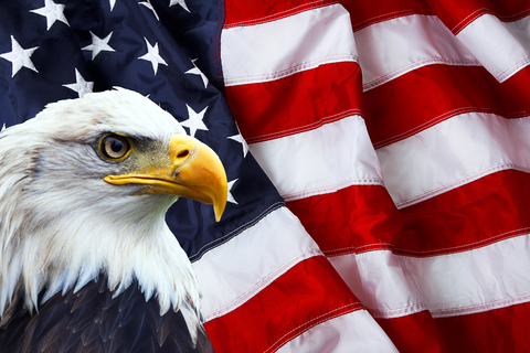 © Stefanoventuri | Dreamstime.com - North American Bald Eagle On American Flag Photo